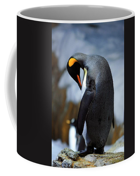 Bird Coffee Mug featuring the photograph Penguin by Randy Matthews