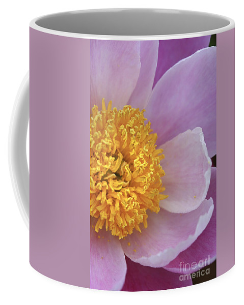 Flower Coffee Mug featuring the photograph Peonie Yellow Center by Deborah Benoit