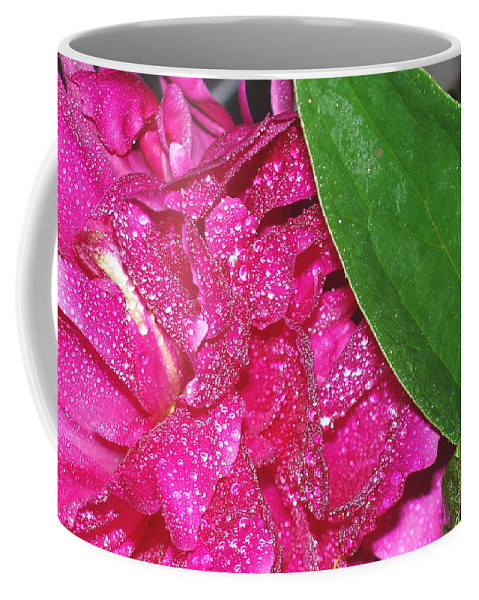 Peony Coffee Mug featuring the photograph Peony And Leaf by Nancy Mueller