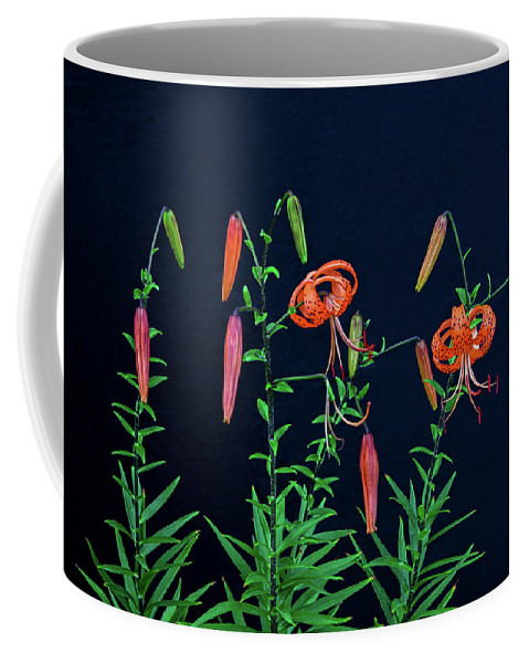 Tiger Lilies Coffee Mug featuring the photograph People Are Not Prisoners Of Fate, But Only Prisoners Of Their Own Minds. by Bijan Pirnia