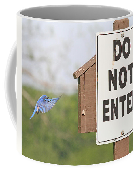 Nature Coffee Mug featuring the photograph Perfect Nesting Box 3 by Mike Dickie