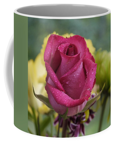 Rose Coffee Mug featuring the photograph Perfectly Pink by Nancie DeMellia