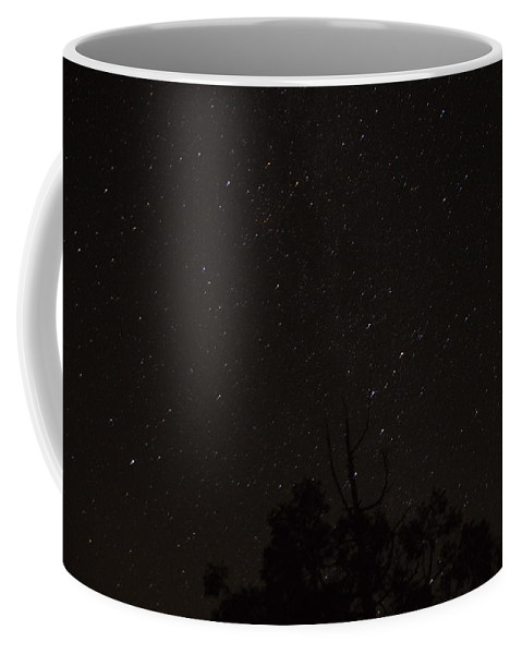 Photograph Of Perseid Meteor Slow Taken In The Mountains Near Julian Coffee Mug featuring the photograph Perseid Meteor Glow E by Phyllis Spoor