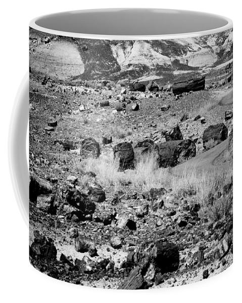 Petrified Forest Coffee Mug featuring the photograph Petrified Forest National Park #2 by Robert J Caputo