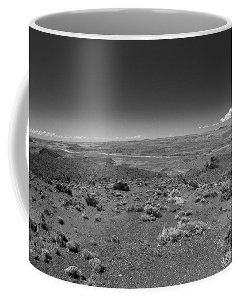 Petrified Forest Coffee Mug featuring the photograph Petrified Forest National Park by Robert J Caputo
