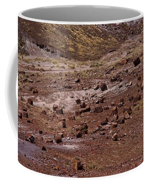 Petrified Forest Coffee Mug featuring the photograph Petrified Wood #3 by Robert J Caputo