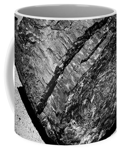 Petrified Forest Coffee Mug featuring the photograph Petrified Wood #4 by Robert J Caputo