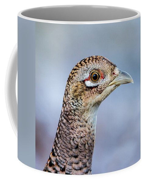 Pheasant Hen Coffee Mug featuring the photograph Pheasant Hen by Torbjorn Swenelius