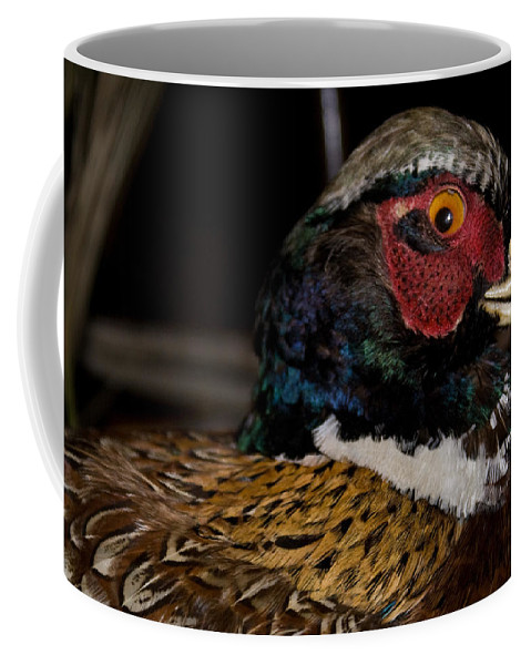 Coffee Mug featuring the photograph Pheasant In The Eye by Douglas Barnett