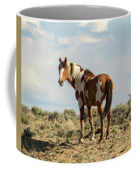 Picasso Coffee Mug featuring the photograph Picasso On The Horizon by Debbie Rudd