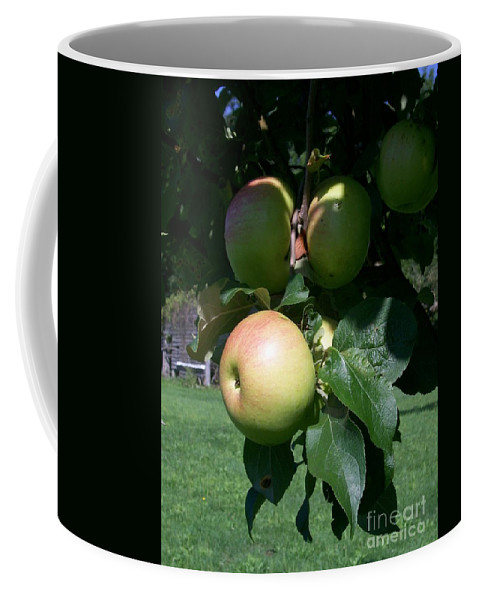 Apple Coffee Mug featuring the photograph Pick Me Pick Me by Laurie Eve Loftin