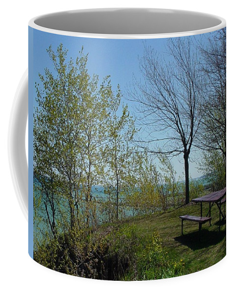 Lake View Coffee Mug featuring the photograph Picnic Table By The Lake Photo by Anita Burgermeister