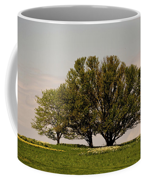 Tree Coffee Mug featuring the photograph Picnic Time by Trish Tritz