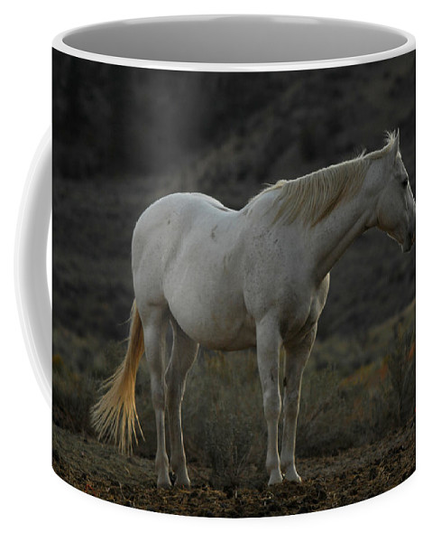 Horse Coffee Mug featuring the photograph Pierre by Donna Blackhall