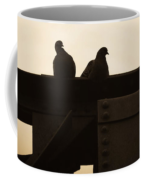 Silhouettes Coffee Mug featuring the photograph Pigeon And Steel by Bob Orsillo
