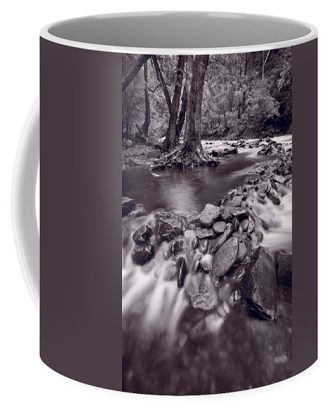 Great Coffee Mug featuring the photograph Pigeon Forge River Great Smoky Mountains Bw by Steve Gadomski