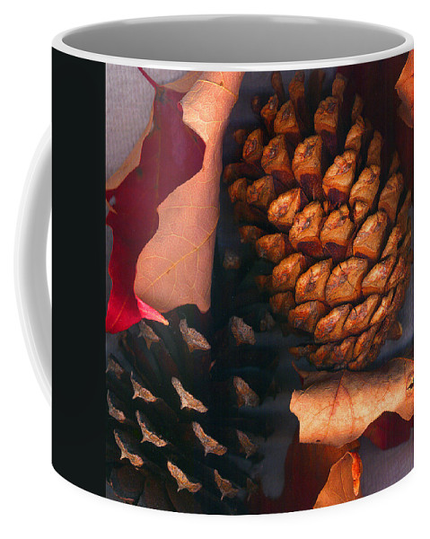 Pine Cones Coffee Mug featuring the photograph Pine Cones And Leaves by Nancy Mueller