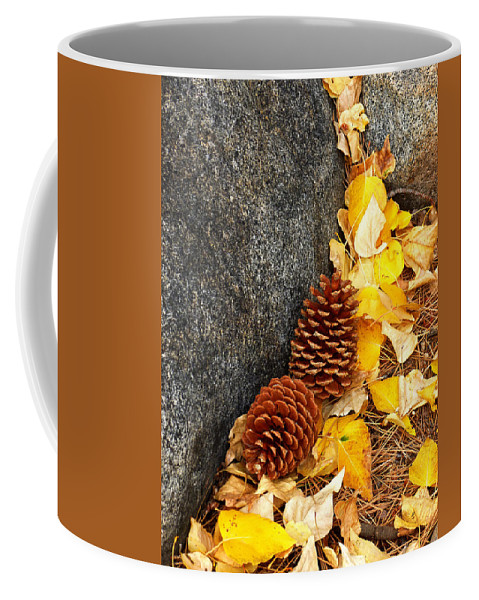 Sierra Nevada Coffee Mug featuring the photograph Pine Cones by Elaine Bawden