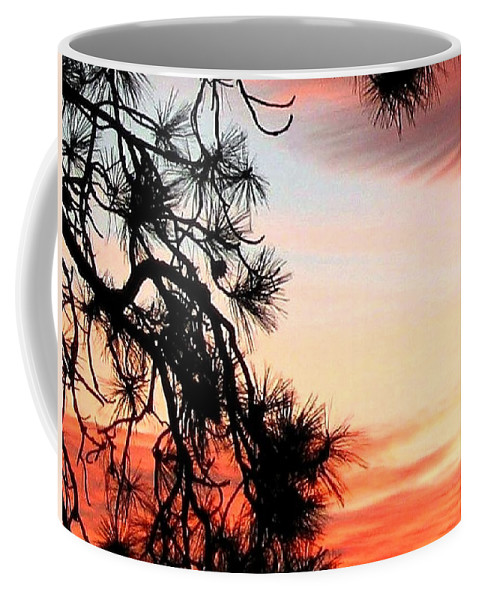 Sunset Coffee Mug featuring the photograph Pine Tree Silhouette by Will Borden