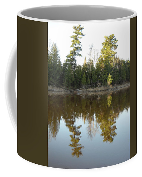 Mississippi River Coffee Mug featuring the photograph Pine Trees Across Mississippi River by Kent Lorentzen