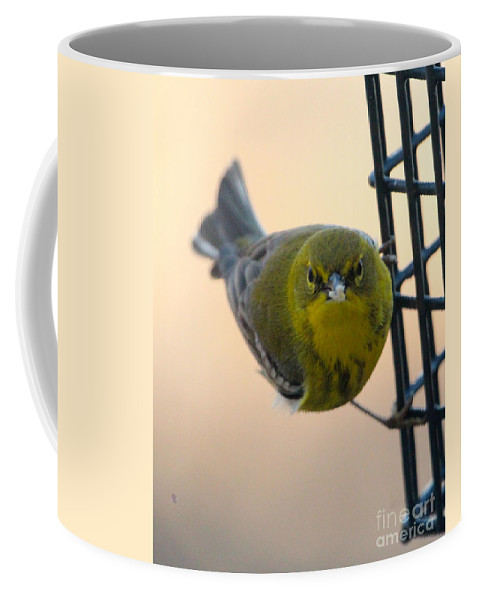 Pine Coffee Mug featuring the photograph Pine Warbler by Laurie Pocher