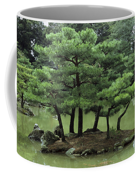 Outdoors Coffee Mug featuring the photograph Pines On Island In The Gardens by Tim Laman