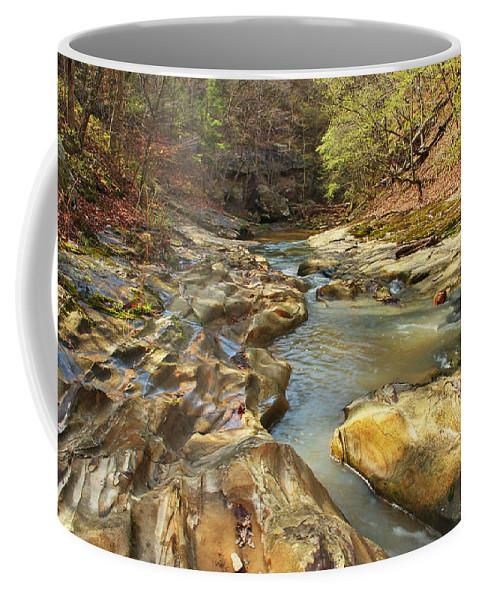 Piney Creek Ravine Coffee Mug featuring the photograph Piney Creek Ravine Revisited 1 by Greg Matchick