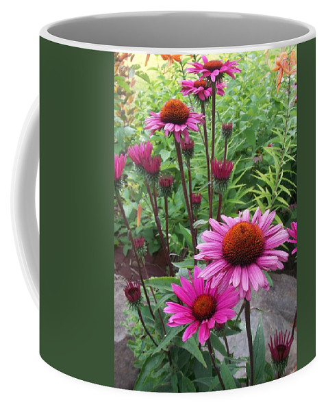 Flowers Coffee Mug featuring the photograph Pink All Over by Anita Burgermeister