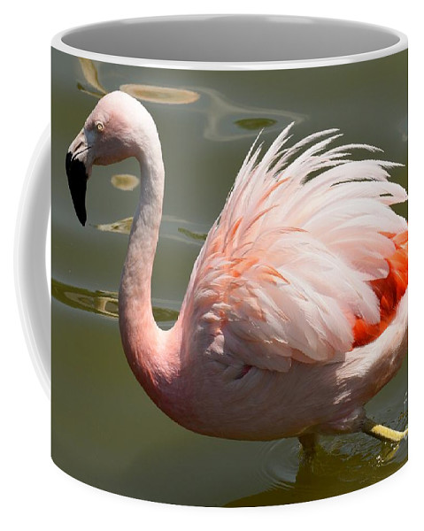 Flamingo Coffee Mug featuring the photograph Pink And Proud by Jennifer Craft