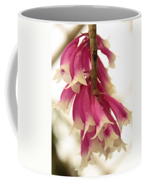 Pink And White Flowers Coffee Mug featuring the photograph Pink And White Bells by Carol Groenen