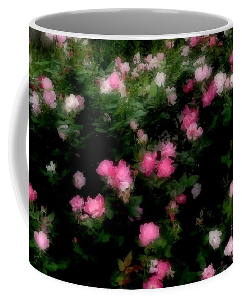 Rose Coffee Mug featuring the photograph Pink And White Roses by Kathleen Struckle