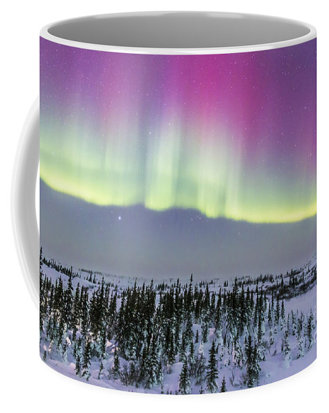 Aurora Coffee Mug featuring the photograph Pink Aurora Over Boreal Forest by Alan Dyer