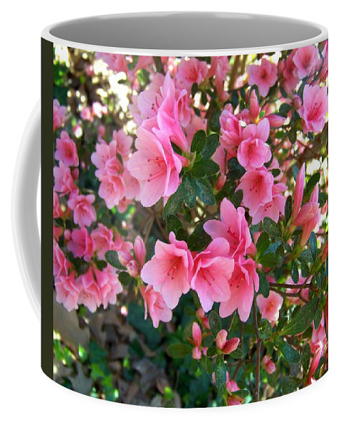 Pink Coffee Mug featuring the photograph Pink Azaleas IIi by Jai Johnson
