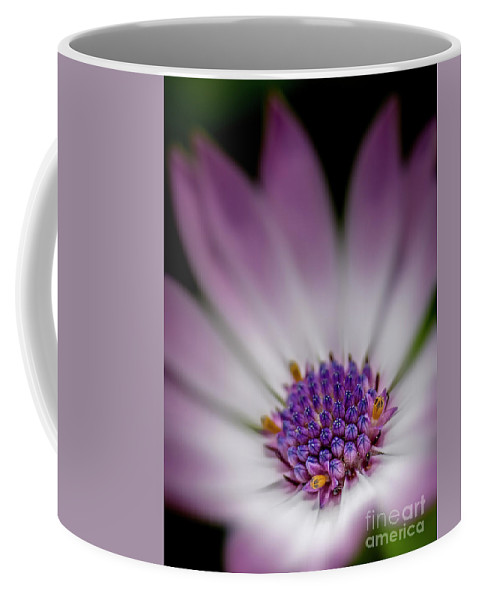 Flower Coffee Mug featuring the photograph Pink Beauty by Alex Archontakis