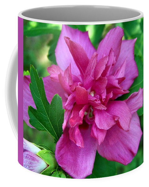 Flower Coffee Mug featuring the photograph Pink Bloom by Jai Johnson