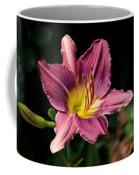 Daylily Coffee Mug featuring the photograph Pink Daylily by Kenny Glotfelty