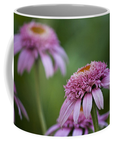 Pink Coffee Mug featuring the photograph Pink Double Delight by Teresa Mucha
