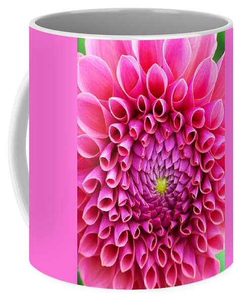 Flower Coffee Mug featuring the photograph Pink Flower Close Up by Anthony Jones