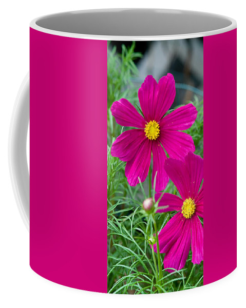 Pink Coffee Mug featuring the photograph Pink Flower by Michael Bessler