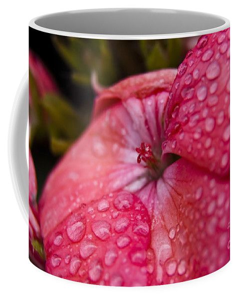 Pink Flower Coffee Mug featuring the photograph Pink Flower With Rain Drops by Sven Brogren