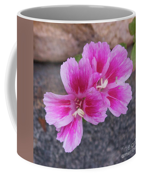 Coffee Mug featuring the photograph Pink Hands by Michael Shaft