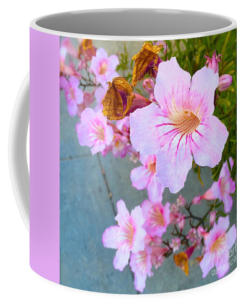 Flower Coffee Mug featuring the photograph Pink Hello by Wonju Hulse