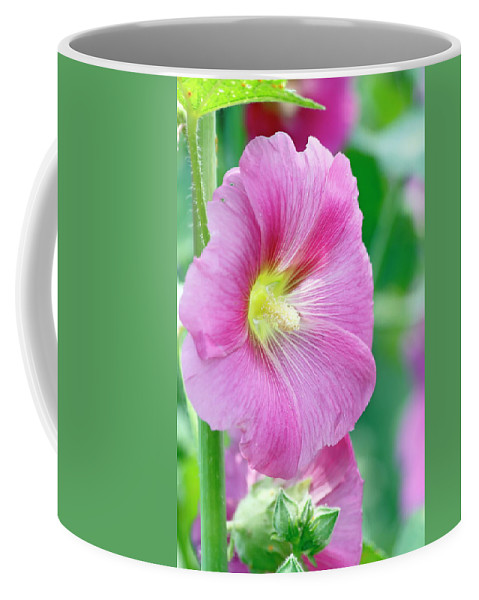 Flower Coffee Mug featuring the photograph Pink Hibiscus by Daniel Caracappa