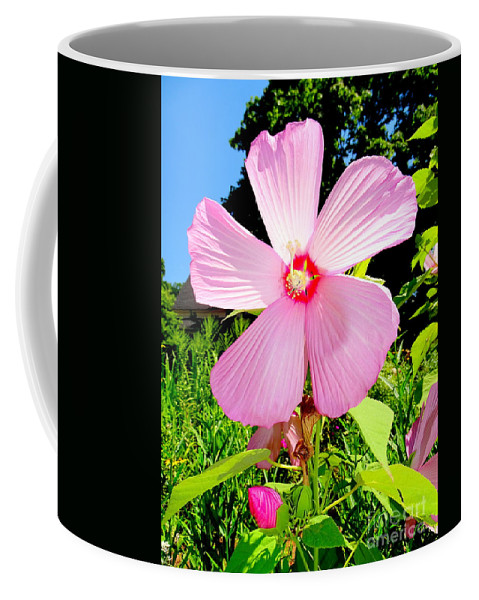 Nature Coffee Mug featuring the photograph Pink Hibiscus by Ed Weidman
