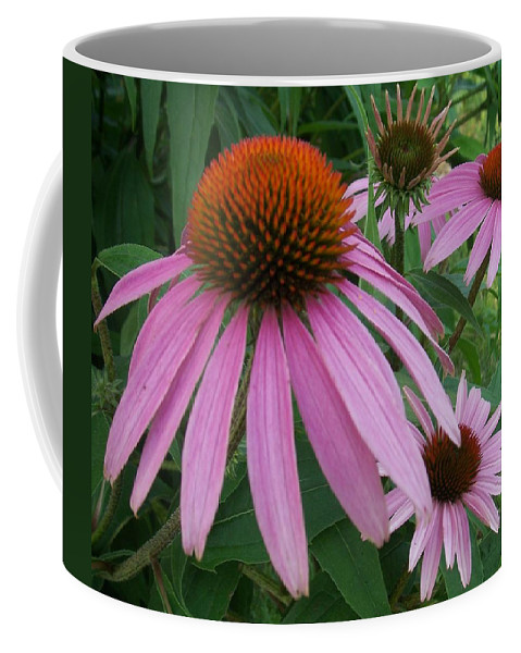 Flowers Coffee Mug featuring the photograph Pink In The Garden by Anita Burgermeister