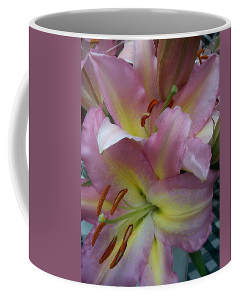 Flowers Coffee Mug featuring the photograph Pink Lillies by Anita Burgermeister