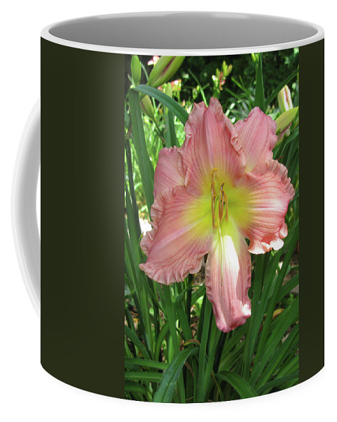 Arrangement Coffee Mug featuring the photograph Pink Lily by Alan Look