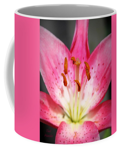 Pink Coffee Mug featuring the photograph Pink Lily by Tina Meador