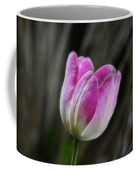 Flower Coffee Mug featuring the photograph Pink On Display by Deborah Benoit