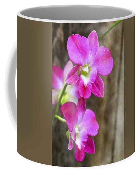Orchids Coffee Mug featuring the photograph Pink Orchid Duo by Deborah Benoit